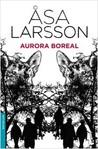 Aurora boreal by Åsa Larsson
