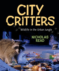 City Critters by Nicholas Read