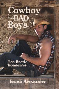 Cowboy Bad Boys by Randi Alexander