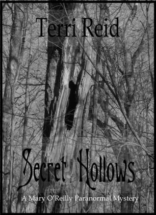 Secret Hollows by Terri Reid