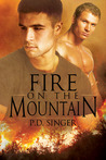 Fire on the Mountain by P.D. Singer