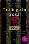 TRIÂNGULO ROSA by Rudolf Brazda