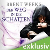Der Weg in die Schatten (Night Angel, #1)