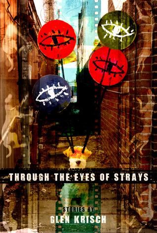 through-the-eyes-of-strays