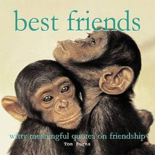 Meaningful Quotes About Friendship Glamorous Best Friends Witty Meaningful Quotes On Friendshiptom Burns