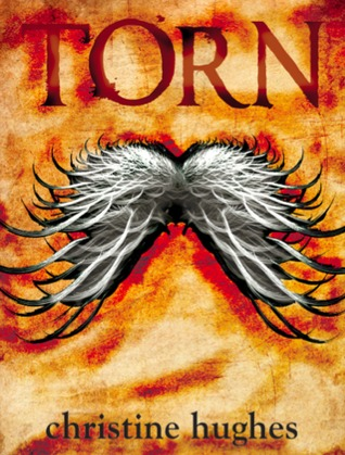 Ebook Torn by Christine  Hughes PDF!
