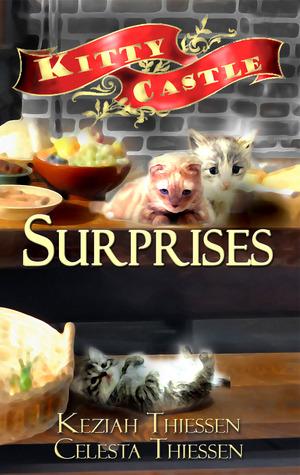 surprises-kitty-castle-2
