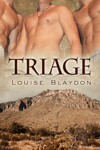 Triage by Louise Blaydon