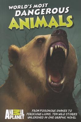 animal-planet-world-s-most-dangerous-animals
