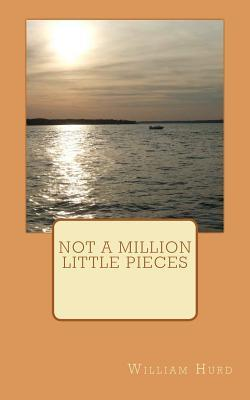 Not a Million Little Pieces