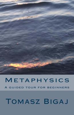 Metaphysics by Tomasz Bigaj