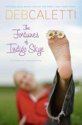 Image result for the fortunes of indigo skye