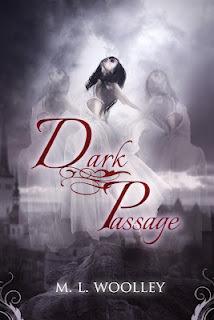 Dark Passage by M.L. Woolley