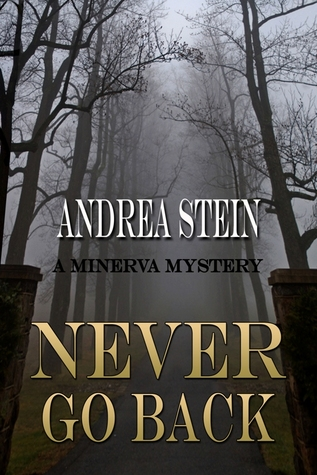 Never Go Back by Andrea Stein