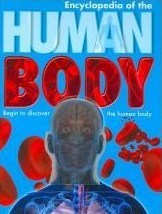Encyclopedia of the Human Body: Begin to Discover the Human Body