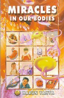 Miracles in Our Bodies