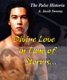 Divine Love in Time of Storms (The Pulse Historia, #2)