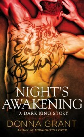night-s-awakening