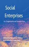 Social Enterprises: An Organizational Perspective