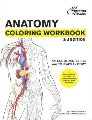 Anatomy Coloring Workbook: An Easier and Better Way to Learn Anatomy