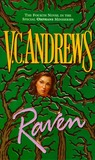 Raven (Orphans, #4)