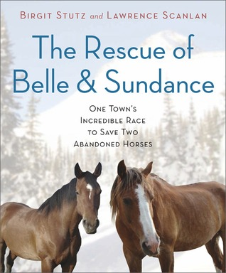 The Rescue Of Belle And Sundance One Towns Incredible Race To Save Two Abandoned Horses