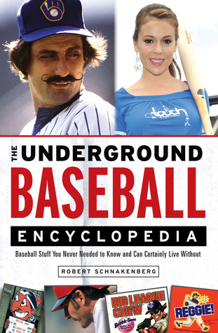 The Underground Baseball Encyclopedia by Robert Schnakenberg