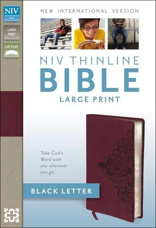 NIV, Thinline Bible, Large Print, Imitation Leather, Red, Lay Flat
