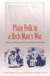 Plain Folk in a Rich Man's War: Class and Dissent in Confederate Georgia