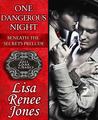 One Dangerous Night by Lisa Renee Jones