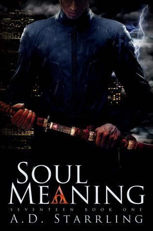 Soul Meaning by A.D. Starrling