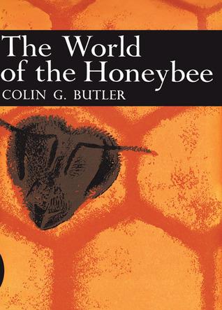 The World Of The Honeybee