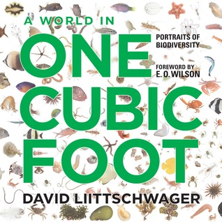 A World in One Cubic Foot: Portraits of Biodiversity