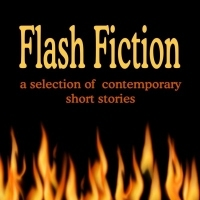 Flash Fiction (Audiofy Digital Audiobook Chips)