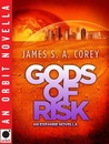 Gods of Risk (Expanse, #2.5)