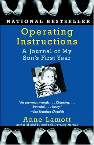 Operating Instructions: A Journal of My Sons First Year