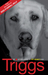 Triggs: The Autobiography of Roy Keane's Dog