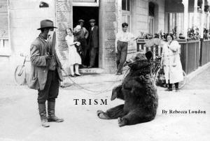 TRISM
