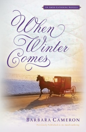 When Winter Comes: An Amish Gathering Novella