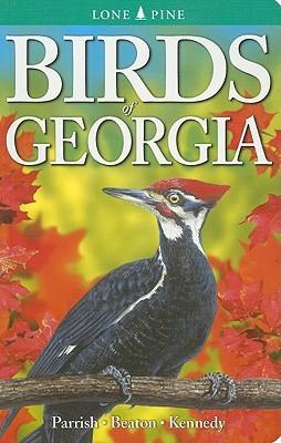birds-of-georgia