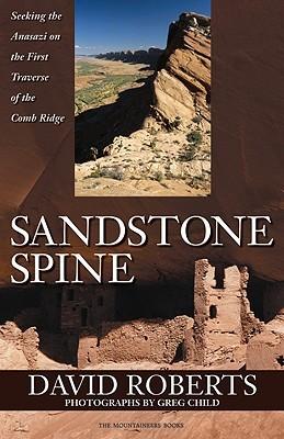 Sandstone Spine by David  Roberts