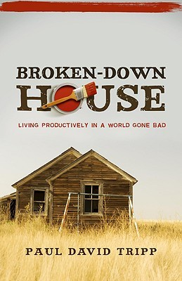 Broken-Down House by Paul David Tripp