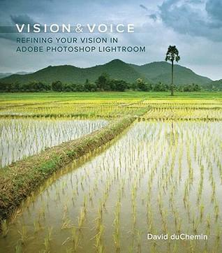 Vision & Voice by David duChemin