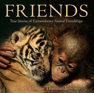 friends-true-stories-of-extraordinary-animal-friendships
