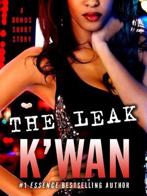 The Leak by K'wan