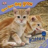 Kitten (See How They Grow)