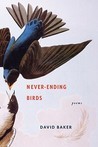 Never-Ending Birds: Poems