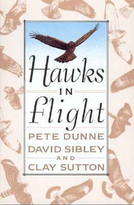 Hawks in Flight: The Flight Identification of North American Migrant Raptors