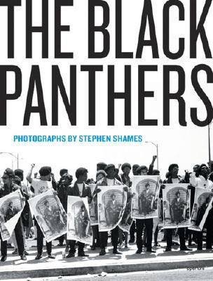 the-black-panthers