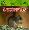 Squirrels by Justine Ciovacco